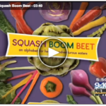 SBB Video screenshot